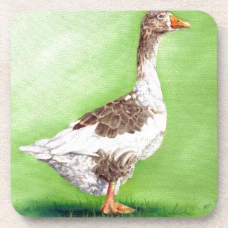 A Portrait of a Goose Coaster