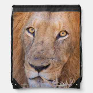 A portrait of a Lion Drawstring Bag