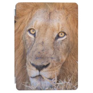 A portrait of a Lion iPad Air Cover