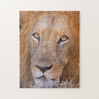 A portrait of a Lion Jigsaw Puzzle
