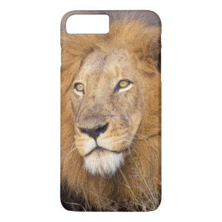 A portrait of a Lion looking into the distance iPhone 8 Plus/7 Plus Case