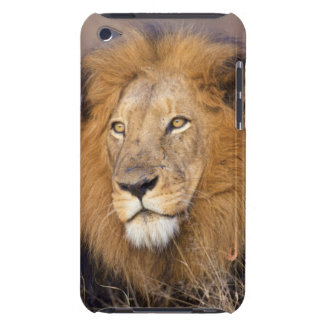 A portrait of a Lion looking into the distance iPod Case-Mate Case