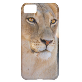 A portrait of a Lioness looking into the distance iPhone 5C Case