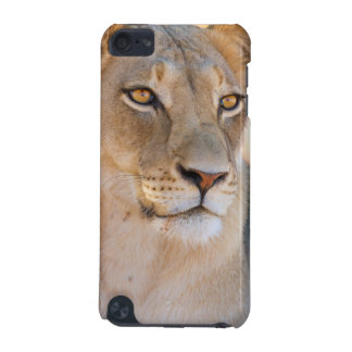 A portrait of a Lioness looking into the distance iPod Touch (5th Generation) Cover