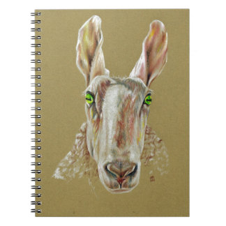 A portrait of a sheep spiral note books