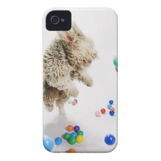 A Portuguese Waterdog jumping amongst falling iPhone 4 Cover