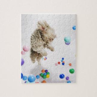 A Portuguese Waterdog jumping amongst falling Jigsaw Puzzle