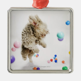 A Portuguese Waterdog jumping amongst falling Silver-Colored Square Decoration