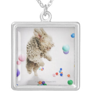A Portuguese Waterdog jumping amongst falling Silver Plated Necklace