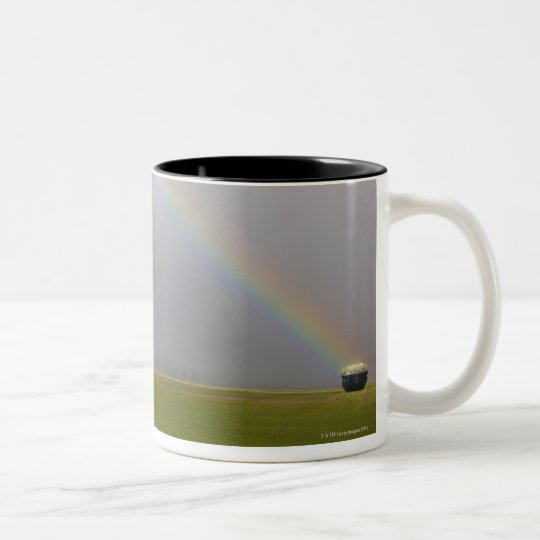 A pot of gold sits at a rainbows end Two-Tone coffee mug