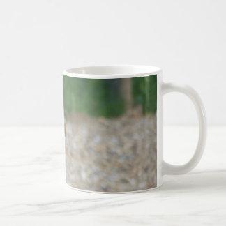 A Prairie Dog Mug