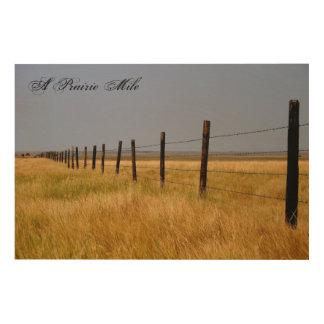 A Prairie Mile Wood Panel Wall Art