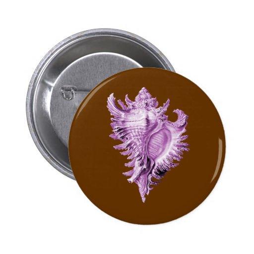 A predatory sea snail button