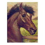 A Prince of the Blood by Currier & Ives Horse Head Post Cards
