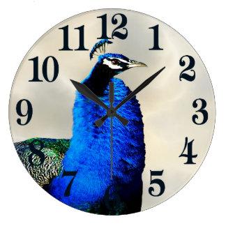 A proud peacock large clock