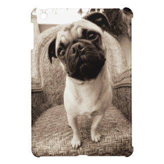 A Pug with its Head Titled to the Side iPad Mini Cases