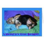 a pups hard day, I Heard It's Your Birthday,
