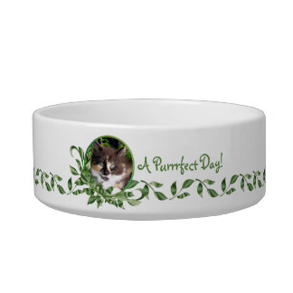 A Purrrfect Day Calico Kitten Pet Water Bowl