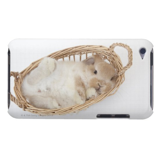 A rabbit is in a basket.Holland Lop. iPod Touch Cover