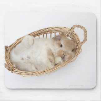 A rabbit is in a basket.Holland Lop. Mouse Pad