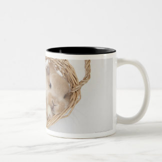 A rabbit is in a basket.Holland Lop. Two-Tone Mug