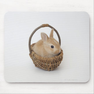 A rabbit is in a basket.Netherland Dwarf. Mouse Pad