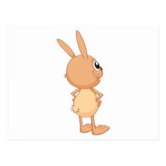 a rabbit postcard