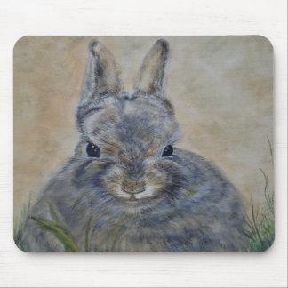 A Rabbit's World Mousepad