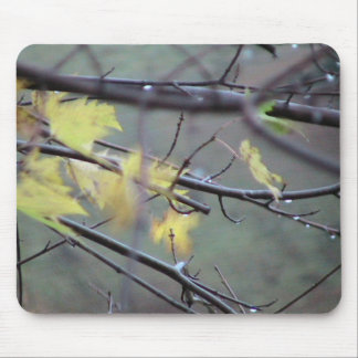 A Rainy Morning In Autumn (Fall) With A Light Bree Mouse Mat