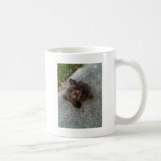 A Real Mogwhy Mug