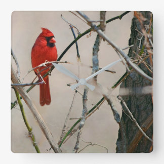 A Red Cardinal Bird on a Branch in the Woods Square Wall Clock