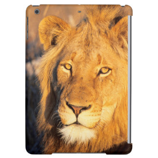 A Red Maned Lion looking at the camera. iPad Air Case