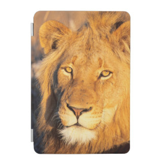 A Red Maned Lion looking at the camera. iPad Mini Cover
