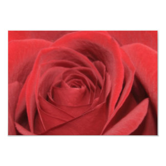 a red rose 9 cm x 13 cm invitation card