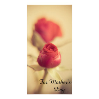 A red rose for the mother…
