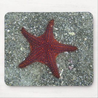 A Red Starfish | Galapagos, Equador Mouse Mat