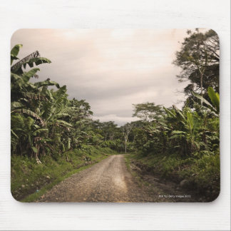 A remote jungle road mouse pad