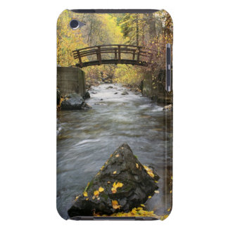 A River Running Through American Fork Canyon Barely There iPod Cases