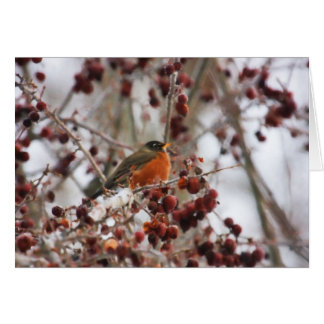 A Robin Greeting The Winter Season Greeting Card