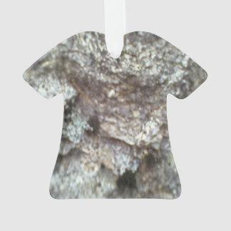 A Rock Ornament