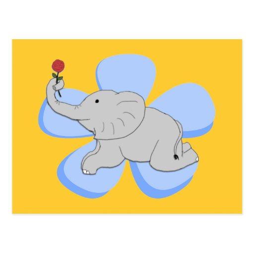 A Rose from a Baby Elephant Postcard