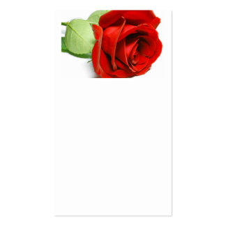 A rose is a rose pack of standard business cards