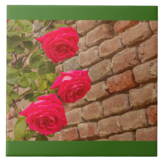 a roses climb on a brick wall ceramic tile