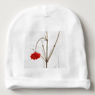 A rowan berries baby beanie