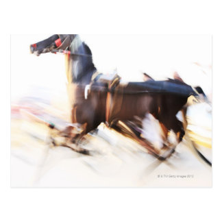 A running horse at a high speed is competing in postcard