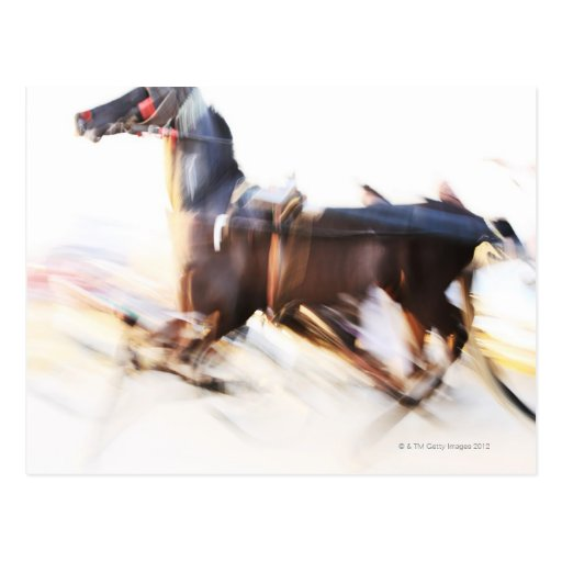 A running horse at a high speed is competing in post card