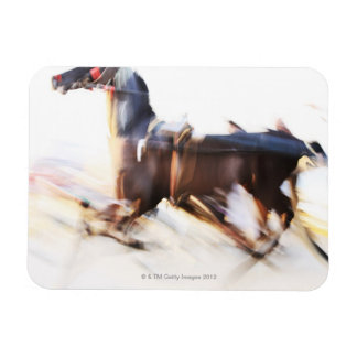 A running horse at a high speed is competing in rectangular photo magnet
