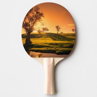 A rural Adelaide Hills landscape Ping Pong Paddle