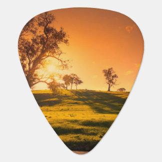 A rural Adelaide Hills landscape Plectrum