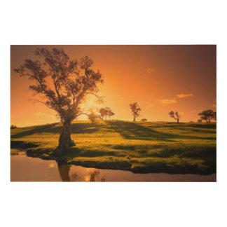 A rural Adelaide Hills landscape Wood Prints
